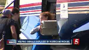 Nashville Humane Association Helps animals displaced by Hurricane Michael [Video]