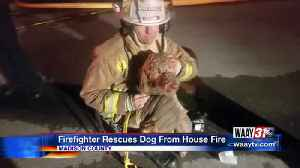 Firefighter rescues dog from house fire [Video]
