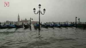Highest Flood Waters in Ten Years Leave Some Wondering if Venice is Sinking [Video]