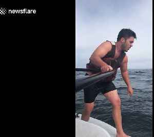 Fisherman leaps onto massive whale in epic 3-hour rescue mission off California coast [Video]