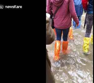 Venice submerged as flood waters take the city by storm [Video]