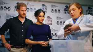 Meghan Markle and Prince Harry Name Newly Hatched Kiwis in New Zealand [Video]