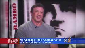 LA Prosecutors Won't Charge Sylvester Stallone In Alleged Sexual Assault Case [Video]