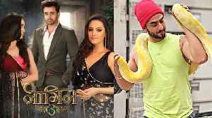 Naagin 3 : Yeh Hai Mohabbatein fame Aly Goni to Enter in the show | FilmiBeat [Video]