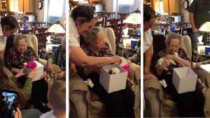 """is it mine?"" World War II veteran great-grandma surprised with new puppy after service dog of 12 years passes awa [Video]"