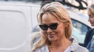Pamela Anderson's View On Feminism [Video]