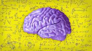 What Is the Difference Between Teen and Adult Brains? [Video]