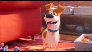 The Funny First Trailer For 'Secret Life Of Pets 2' [Video]