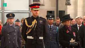 Prince Harry Attends Field Of Remembrance Service [Video]