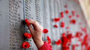 News video: The Story Behind Poppies, The 'Flower Of Remembrance'