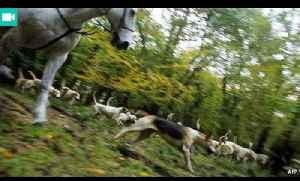 Why Britons still hunt foxes | The Economist [Video]