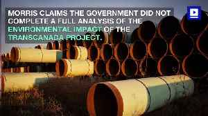 Keystone XL Pipeline Construction Halted by US Judge [Video]