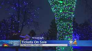 Tickets For Denver Zoo Lights On Sale Now [Video]