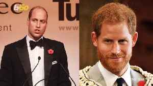 Prince Harry is Losing His Hair and Could be Bald By This Age [Video]