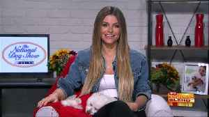 Celebrating the National Dog Show with Maria Menounos [Video]