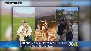 Attleboro Mayor Embarks On Cross-Country Journey With Dying Dog [Video]