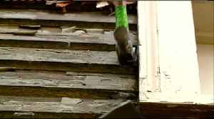 Veterans continue service by rebuilding home for La Crosse family in need [Video]