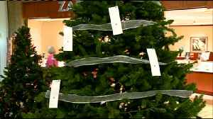 600 area kids hope Santa will leave gifts under the Salvation Army's Angel Giving Tree [Video]
