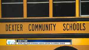 Dexter school bus driver runs over wounded deer to 'end its suffering' while students watched [Video]