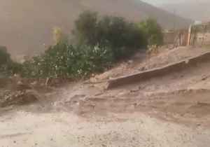 Multiple Fatalities Reported as Flash Flooding Swamps Jordan [Video]
