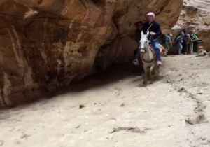 News video: Flash Flood Rushes Through Canyon in Jordan's Petra, Chasing Donkeys, Knocking Down People