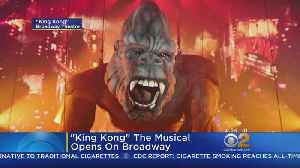 'King Kong' The Musical Opens On Broadway [Video]