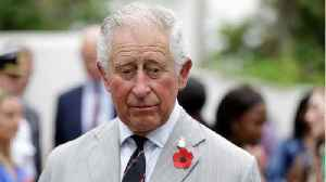 Britain's Prince Charles Says He's 'Not That Stupid' [Video]