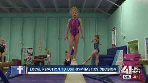 Local gym reacts to Team USA Gymnastics' demise [Video]