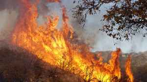 California wildfires driven by weather and climate conditions [Video]