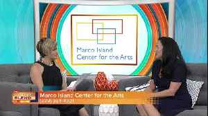 Marco Island Center for the Arts [Video]