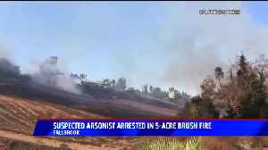 Arson Suspect Arrested in Connection with Southern California Brush Fire [Video]