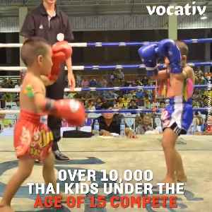 Thai Doctors Call for End to Children Boxing Professionally and We Agree [Video]
