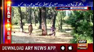 Headlines ARYNews 1300 13th November 2018 [Video]