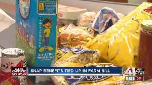 SNAP benefits tied up in farm bill [Video]