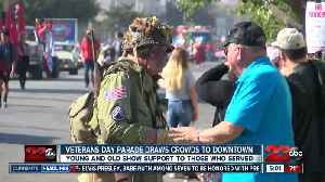 A look at the Veterans Day Parade [Video]
