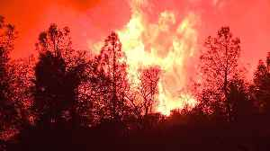 Death Toll Rises to 42, Making Camp Fire Deadliest in California`s History [Video]