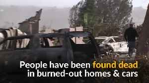 Deadly California wildfires force people to flee [Video]