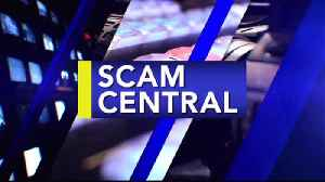 SCAM CENTRAL 11-12 [Video]