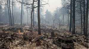 National Guard Join The Search For Victims of California Fires [Video]