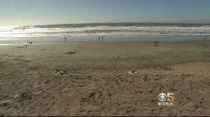 Corporate Sand Mining In SF Bay Sparks 'Sand Wars' [Video]
