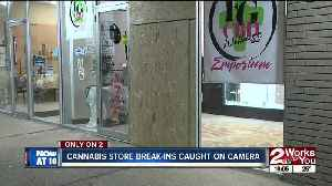 Cannabis store break-ins caught on camera [Video]