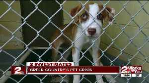 Green Country's pet crisis [Video]