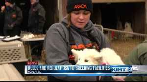 State rules and regulations about breeders [Video]