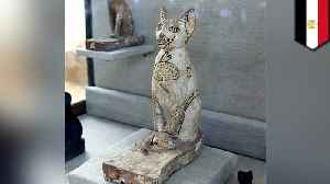 Dozens of cat mummies, statues discovered in ancient tomb [Video]