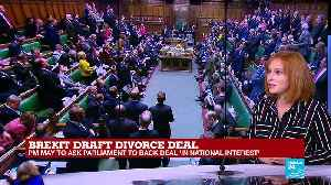 Brexit draft deal: What is the difference between a people's vote and a new referendum? [Video]