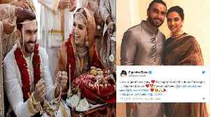 Deepika - Ranveer Wedding: Anushka Sharma, Katrina, Karan Johar & Others WISH Deepveer | FilmiBeat [Video]