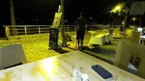 Bull sea lion evicted after causing a scene at beachfront restaurant [Video]