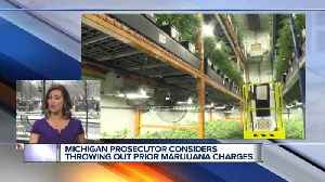 Prosecutor dropping some marijuana cases after Michigan vote [Video]