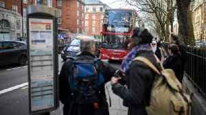 London's Air Quality Improved, Children's Lung Health Didn't [Video]