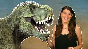 What sounds did dinosaurs make? And what colors were they? [Video]